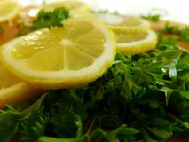 Summer kitchen. Lemon and herbs Stock Images