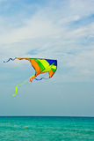 Summer kite Stock Photography