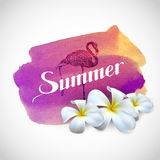 Summer label with exotic frangipani flowers and flamingo bird on Royalty Free Stock Photography
