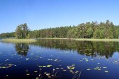 Summer lake Royalty Free Stock Photo