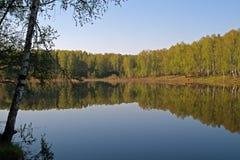 Summer Lake Royalty Free Stock Image