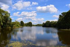 Summer lake. Summer day in lake Stock Photo
