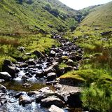 Rocks and stream in summer Royalty Free Stock Photo