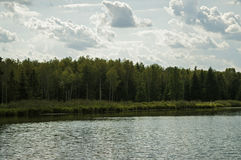 Summer lake. The forest above the lake in the summer Stock Photo
