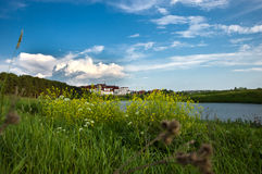 Summer lake and forest view. Stock Images