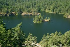 Summer lake in forests Stock Photos