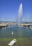 Summer on the lake Geneva (Leman ),in the harbor of  Geneva ,Switzerland Stock Image