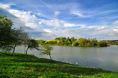 Summer lake in green landscape royalty free stock images