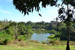 Summer Lake. This a jumboree lake at Muntinlupa Philippines stock image