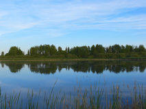 Summer lake landscape. Landscape by the lake royalty free stock images