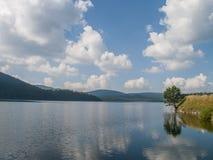 Summer lake landscape Royalty Free Stock Photography