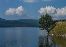 Summer lake landscape Stock Photo