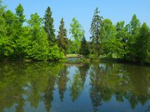 Summer lake with many green trees on bright day. Summer lake with many trees and small wooden bridge on sunny day Royalty Free Stock Photography