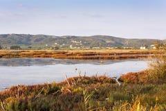 Summer Lake - Natura 2000. Photo of a lake at the evening - Natura 2000 Stock Photography