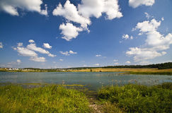 Summer lake near country village Stock Image