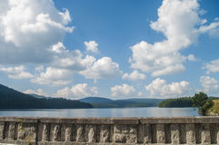 Summer lake near the forest. Royalty Free Stock Image