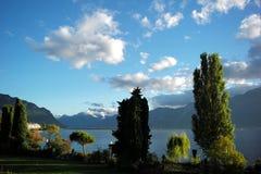 Summer lake shore landscape Stock Images