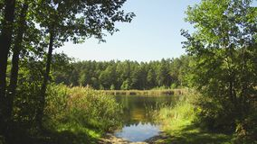 Summer Lake, a static frame. For the backdrop stock footage