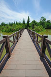 Summer lake with straight bridge Royalty Free Stock Image