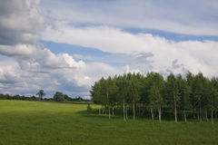 Summer land sky horizon Stock Images