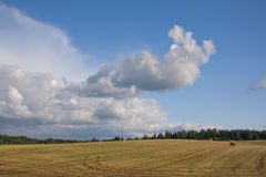 Summer land sky horizon Stock Photography