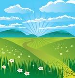 Summer landscape. Summer beautiful landscape, vector illustration Stock Images