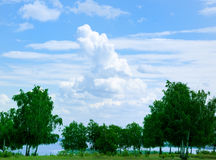 Summer Landscape. Clouds and trees in a south river Volga orchard Stock Photography