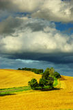 Summer landscape. View of summer landscape in month July in Czech republic Royalty Free Stock Photos