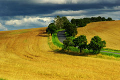 Summer landscape. View of summer landscape in month July in Czech republic Royalty Free Stock Image