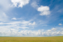 Summer landscape. Country grassland under blue sky in summer royalty free stock photo