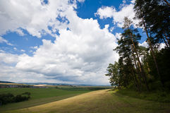 Summer landscape. With cloudy sky over meadow Stock Image