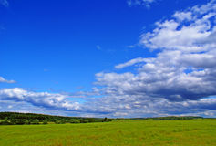 Summer landscape. With blue sky, green grass and trees Royalty Free Stock Photos