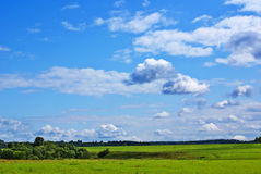 Summer landscape a. Summer landscape with cloudy sky, green grass and trees Stock Photography