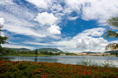 Summer landscape. Beautiful landscape from the Chinese island Hainan Royalty Free Stock Image