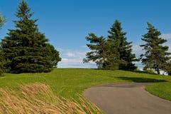 Summer landscape. Royalty Free Stock Image