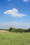 Summer landscape. A summer landscape with blue sky and tractor royalty free stock image