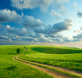 Summer landscape. With green grass, road and clouds Royalty Free Stock Photography