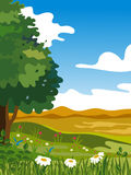 Summer landscape. Bright summer landscape with a tree Royalty Free Stock Images