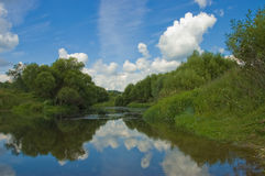 Summer landscape. With river trees and the sky royalty free stock image