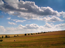 Summer Landscape. With clouds and meadow Royalty Free Stock Images