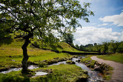Summer Landscape. Beautiful landscape in Yorkshire Dales National Park in England Royalty Free Stock Photography
