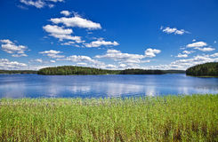 Summer landscape. Beautiful summer landscape. Lake, wood and the blue sky Stock Images