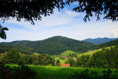 Summer Landscape. Panorama of summer Landscape, please see also other my picture Royalty Free Stock Photography