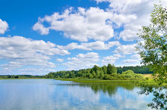 Summer Landscape Stock Images