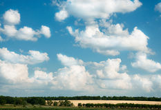 Summer landscape. Big white clouds on blue sky and fields with trees on a bright sunny day Royalty Free Stock Photos