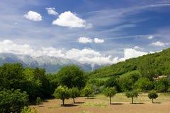 Summer Landscape. Summer mountain landscape, blue sky, Italy Stock Photo