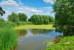 Free Summer Landscape Stock Images - 2722204