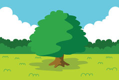 Summer landscape. With tree vector illustration Stock Image