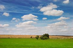 Summer landscape. French landscape in Summer season Royalty Free Stock Photo