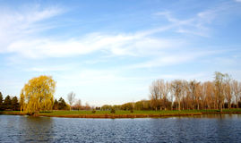 Summer landscape. Of a river Royalty Free Stock Photo